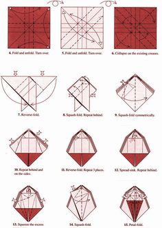 chou chou no origami - Tìm với Google
