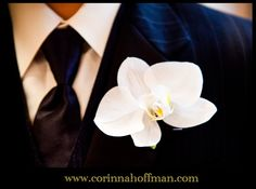 © Corinna Hoffman Photography - www.corinnahoffman.com - Jacksonville, Florida - Jacksonville FL Wedding Photographer - Groom - Bout
