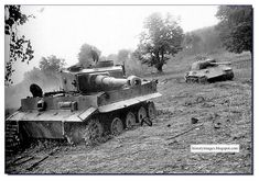 Destroyed German tanks in Belarus