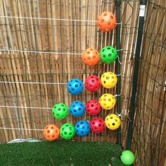Our homemade outdoor abacus. Nice