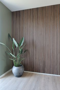 Acupanel Walnut Acoustic Wood Panel Acupanel Natural Walnut Acoustic Slat Wood Panels for Wall & Ceiling Wood Slat Wall, Wood Panel Walls, Wood Slats, Wood Slat Ceiling, Wood On Walls, Timber Wall Panels, Textured Wall Panels, Pvc Wall Panels, Decorative Wall Panels