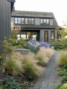Beautiful ideas for landscaping with ornamental grasses used as an informal grass hedge, mass planted in the garden, or mixed with other shrubs and plants. grass pool landscape Landscaping with Ornamental Grasses House Landscape, Landscape Designs, Landscape Architecture, House Architecture, Landscaping Around House, Backyard Landscaping, Landscaping Design, Landscaping With Grasses, Ornamental Grass Landscape