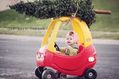 Oak Hart Images~ Baby gets the Christmas Tree photoshoot