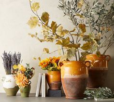 Fall Home Decor: Design tips and autumn decorating ideas. Find information and tons of fall decor curated by interior designer Tracy Svendsen.