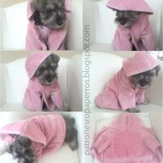 Terry cloth robe for after bath drying Yorshire Terrier, Dog Crafts, Puppy Clothes, Pet Fashion, Pet Costumes, Animal Projects, Girl And Dog, Dog Dresses, Love Pet