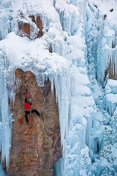 Hanging On ,Box Canyon Falls in Ouray, Colorado