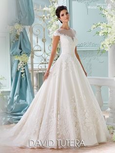 Bridal gown with cap sleeves, tulle, organza and embroidered Chenille lace satin ball gown, illusion jewel neckline over sweetheart bodice with delicate satin natural waistband, lace appliqué illusion back bodice with covered button closures, thin horsehair hemline and chapel length train.