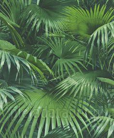 Tapeta 524901 Rasch Crispy Paper, liście palmy