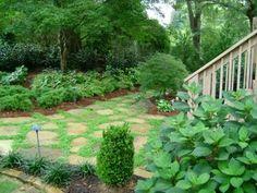 Woodland Backyard, grassless yard