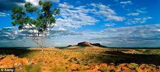 Image result for australian outback scenes Golf Courses, Paintings, Image, Paint, Painting Art, Painting, Portrait, Drawings, Resim