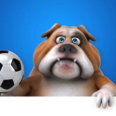 Vino la fotbal! Scoala de fotbal ACS RAIDERS BUCURESTI organizeaza inscrieri pentru grupele de initiere si performanta la toate categoriile de juniori. Cotizatia lunara de membru este de 200 lei iar echipamentul de antrenament si primele 3 antrenamente sunt gratuite! Relatii suplimentare la telefon 0733947177.  #fotbal #fotbalisti #fotbalRomania #antrenor #antrenamente Raiders, Lei, Pitbulls, Dogs, Animals, Animales, Pit Bulls, Animaux, Pet Dogs