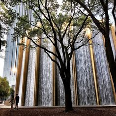 I'm in Houston - Beyonce's homeland! Wonder if she's ever visited the Water Wall here. You could go inside and it felt like you were the epicentre of a waterfall. Poket Park, Landscape Architecture, Landscape Design, Indoor Zen Garden, Contemporary Water Feature, Water Curtain, Visit Houston, Indoor Water Features, Cascade Water