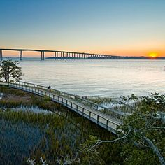 Get to Know Daniel Island | About Daniel Island | CoastalLiving.com