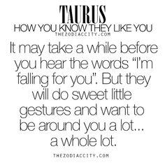 Zodiac Taurus: How you know they like you.