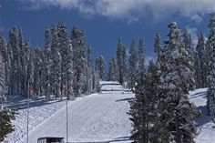 Badger Pass ski slopes