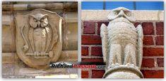 Yale Owl Architecture 2