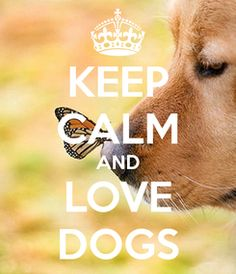 KEEP CALM AND LOVE DOGS. Another original poster design created with the Keep Calm-o-matic. Buy this design or create your own original Keep Calm design now. Keep Calm Posters, Keep Calm Quotes, I Love Dogs, Puppy Love, Mans Best Friend, Best Friends, Keep Calm And Love, My Love, Keep Calm Signs