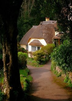 "shorenaratiani: "" Selworthy Cottage, Somerset, England Photo by Canis Major on…"