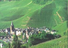 Bernkastel-Kues Germany  The rows of green are vines of grapes!
