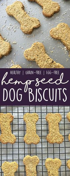 Promote joint health and skin/coat health by making these healthy, grain-free hemp seed dog biscuits for your pups! (Healthy Homemade Dog Treat Recipe)