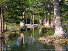 """""""GUADALUPE RIVER"""" Central Texas"""