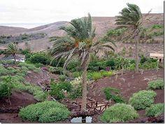 La Lajita Oasis Park, Fuerteventura, Spain