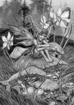 fairy sitting on a mushroom with a face.
