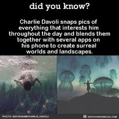 The More You Know, Did You Know, Pretty Pictures, Cool Photos, Photo Trop Belle, Amazing Photography, Art Photography, Wtf Fun Facts, Random Facts