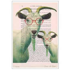 Two clever goats with spectacles Animal Painting by Cocodeparis