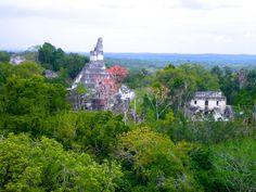 incroyable vue temple du jaguar tikal guatemala