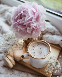 latte, macaroon and peony Coffee Cafe, Coffee Drinks, Coffee Shop, Coffee Mugs, Coffee Is Life, I Love Coffee, Happy Coffee, Good Morning Coffee, Coffee Break