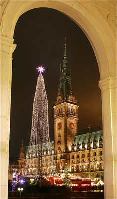 View to Hamburgs townhall with christmas market, Denmark