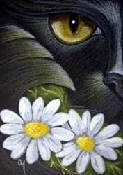 Art: BLACK CAT MERCAT - APRIL DAISY FLOWERS by Artist Cyra R. Cancel