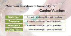 The duration of immunity for Rabies vaccine, Canine distemper vaccine, Canine Parvovirus vaccine, Feline Panleukopenia vaccine, Feline Rhinotracheitis, feline Calicivirus, have all been demonstrated to be a minimum of 7 years by serology for rabies and challenge studies for all others. In the Duration of Immunity to Canine Vaccines: What We Know and What We... Continue Reading