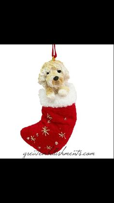 santa paw stocking