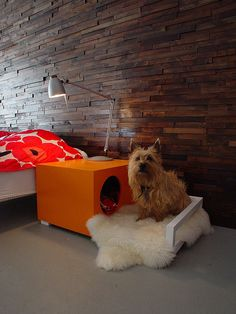 Indoor dog house/side table combo