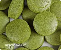 Studies show that spirulina can help prevent cancer, boost brain function and more