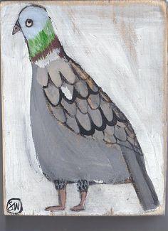 pigeon   sally_wolfe_   Flickr