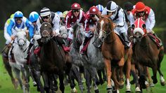 Winners At (and more!) Already This Week Horse Racing Tips, Racing News, Equestrian, Horses, Animals, Software, Money, Sport, Animales