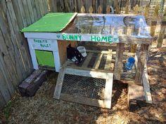 Pallet rabbit hutch!