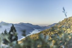 Lago die Lugano view from #Cademario || Ticino