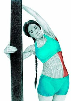So what kind of muscles do you stretch when you do yoga? Look at these stretching exercises with pictures do find out - Vicky Tomin is a Yoga exercise Muscle Stretches, Stretching Exercises, Wellness Fitness, Yoga Fitness, Yoga 1, Yoga Anatomy, Kundalini Yoga, Yoga Routine, Massage Therapy