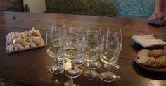 Enjoy wine tastings in Douro
