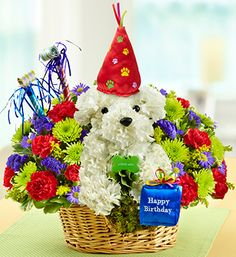 Another Year Rover™- Colorful a-DOG-able® arrangement of white carnations, poms, mini carnations, statice, monte casino and variegated pittosporum with festive plush birthday hat, plush present and a pair of paper party horns $59.99 #happybirthday #adogable #flowers #birthdaypresents