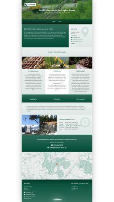 Thomann Forst AG, Parsonz, Forstarbeiten, Holzernte, Holzhandel
