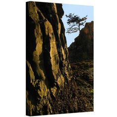 Dean Uhlinger Oregon Coast Sunset Gallery-Wrapped Canvas, Size: 24 x 32