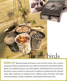 unique bird feeder