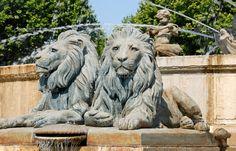 Löwen-Statuen in Aix en Provence, Südfrankreich