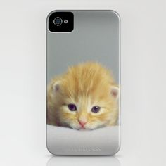 CAT + MOUSE iPhone Case by Monika Strigel - $35.00