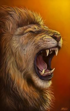Lions Roar ... My fight name on Pinterest | Lion, Roaring Lion and ...